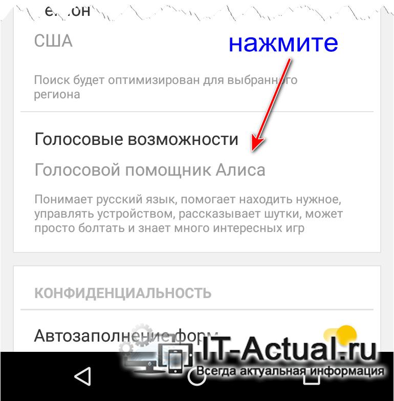 Находим опцию голосовых возможностей в браузере