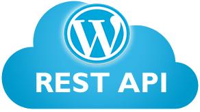 Корректное отключение REST API WordPress -инструкция 2017 года