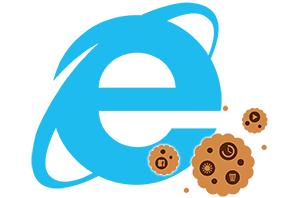 Как записать (внедрить) куки для сайта в Internet Explorer