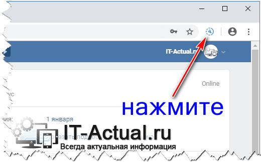ViKey Zen добавил свою кнопку в браузер
