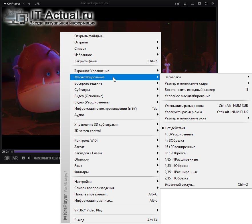Полная поддержка масштабирования видео в KMPlayer