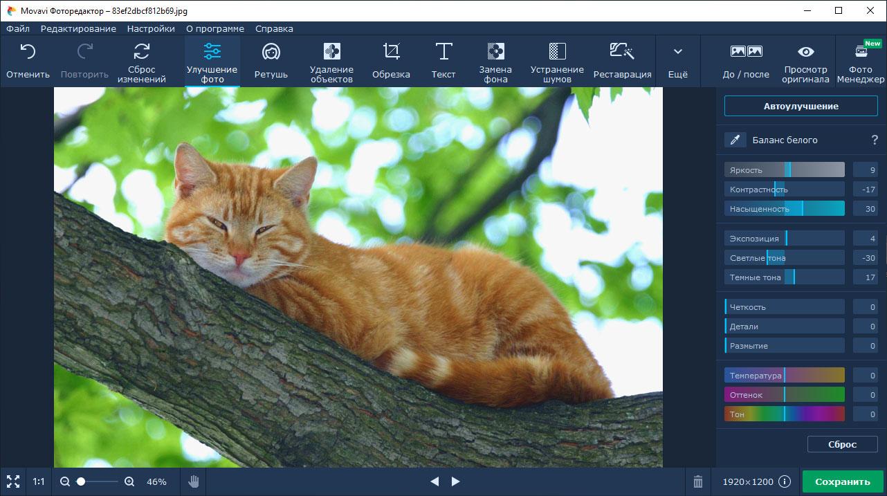 Функции в редакторе, позволяющие улучшить редактируемое изображение