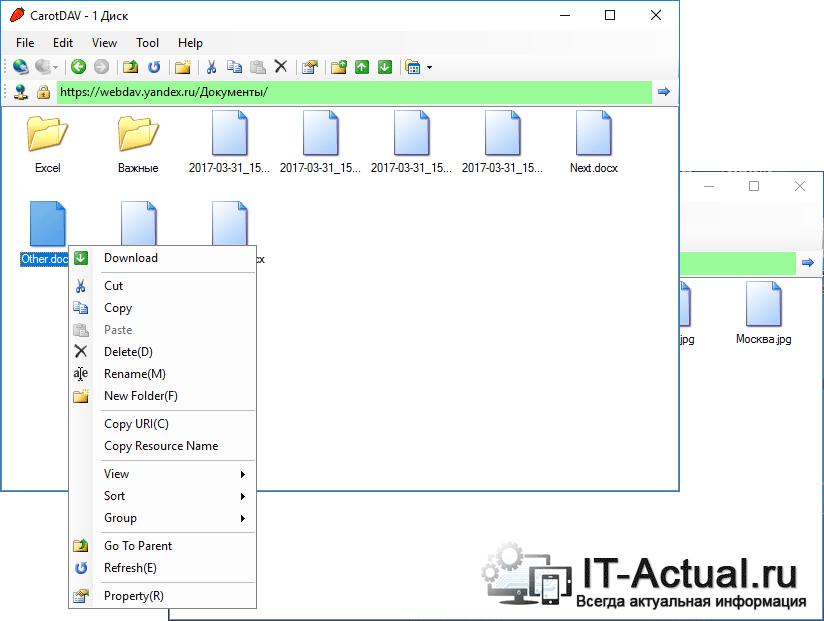 Возможности, что имеются по работе с файлами и папками в хранилище через программу CarotDAV